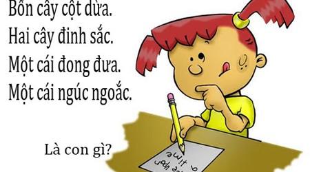 Vietnamese Riddles