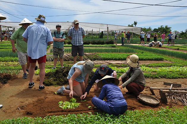 hoi an family farming tour