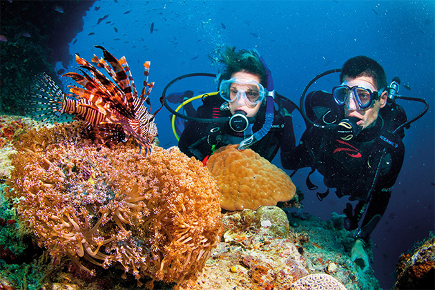 south phu quoc snorkeling