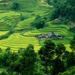 y linh ho village in sapa