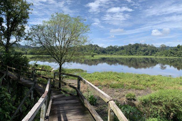 walk on the wooden bridge to visit nam cat tien national park