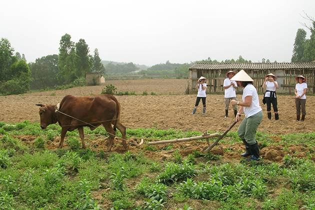 experience farm work on the field of Moon Garden