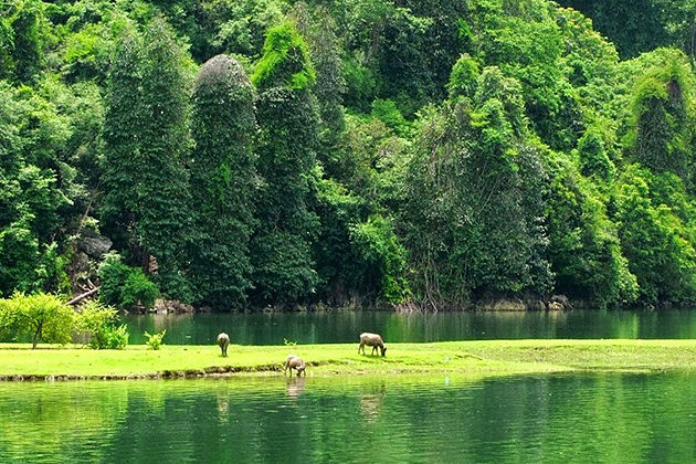 ba be national park and Ba Be Lake in Bac Kan