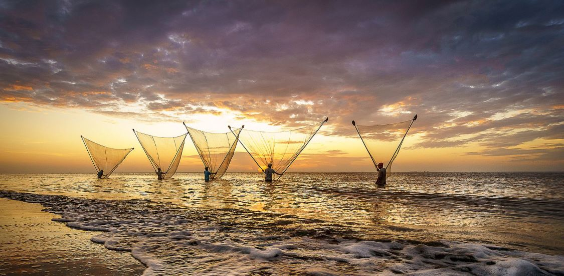 fishing on stilts in nam dinh vietnam tour packages