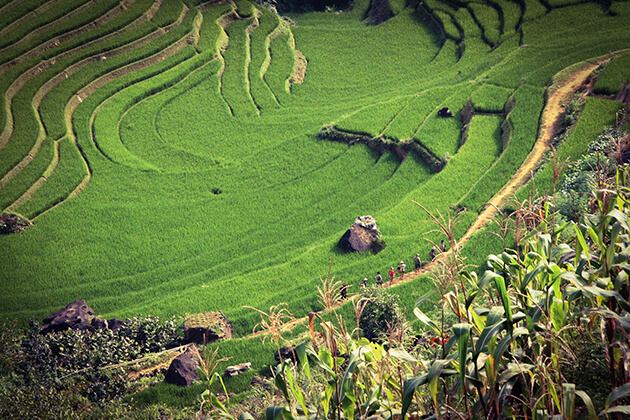 best things to do and see in Sapa