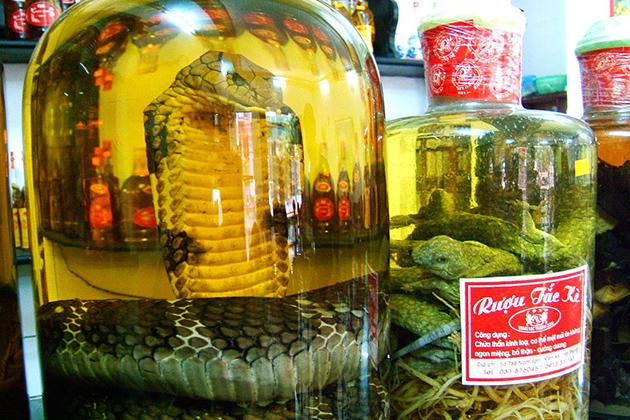 snake wine vietnam facts