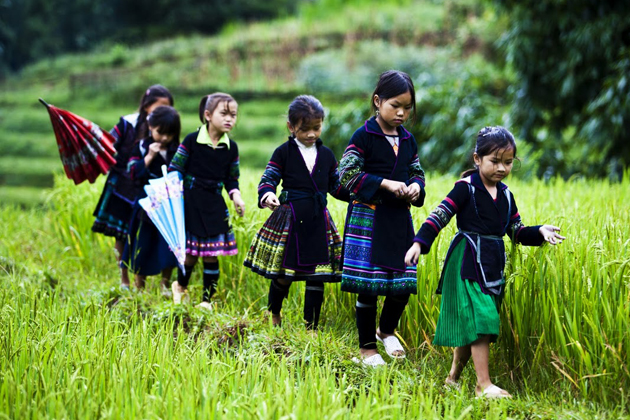 Ethnic children on the rice field, Giang Ta Chai Village