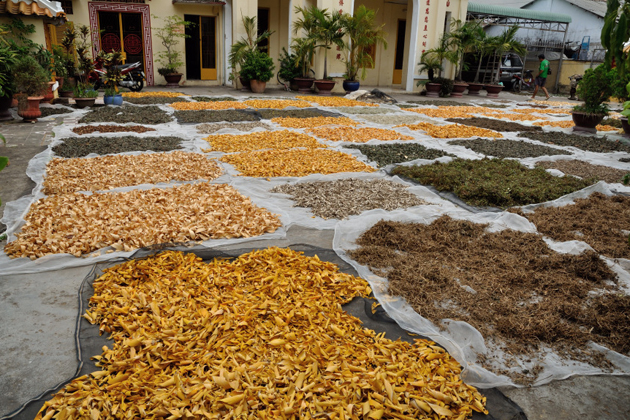 The curer dries the Traditional Medicine in vietnam