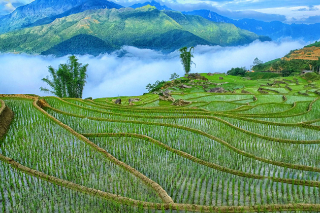 january and february in northern Vietnam best time to visit Vietnam