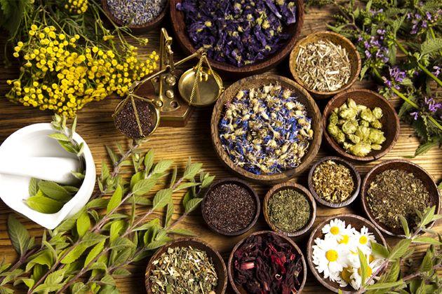 traditional medicine in vietnam