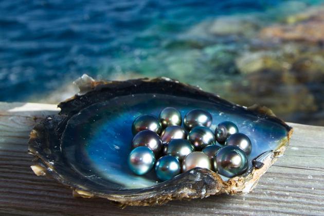 vietnam pearls vietnam souvenirs