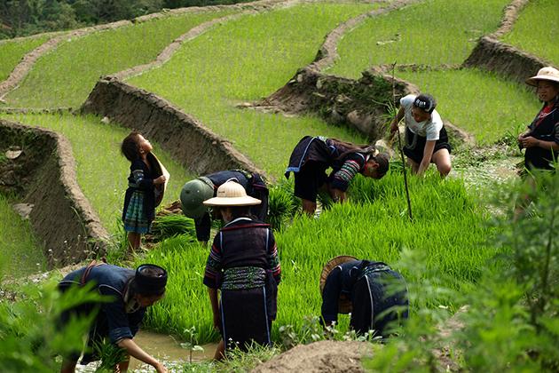 Y Linh Ho Village