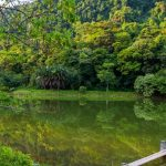 small lake inside cuc phuong national park