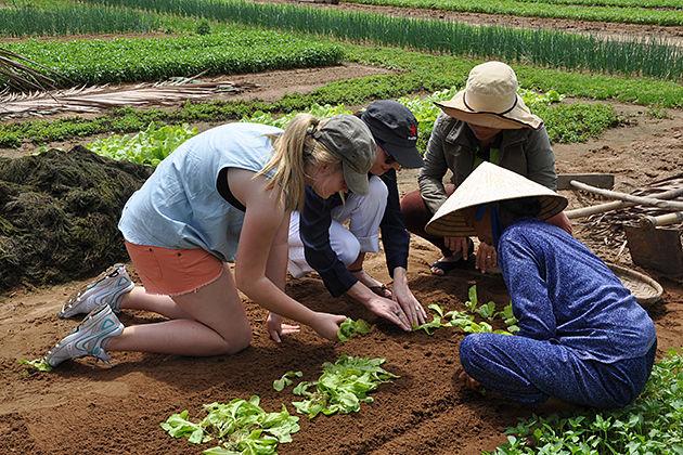 hoi an farming tour vietnam trip itinerary 3 weeks