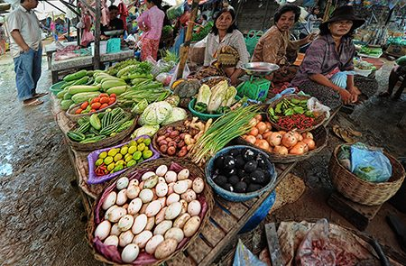 Cambodia Lifestyle | The Daily Lifestyle of Cambodian People