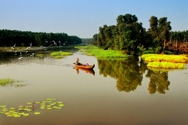 mekong delta nature