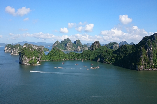 nature in halong bay