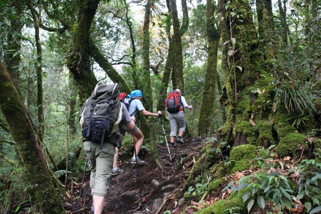 trekking adventure in vietnam
