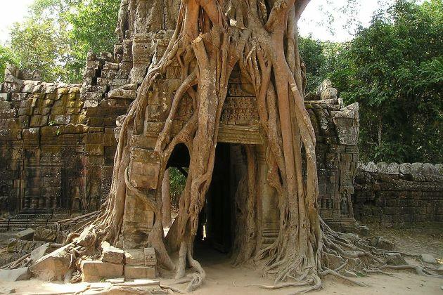 a gate in angkor wat