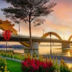 dragon bridge in danang vietnam travel packages