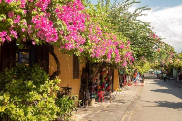 old house decorated with flowers in hoi an