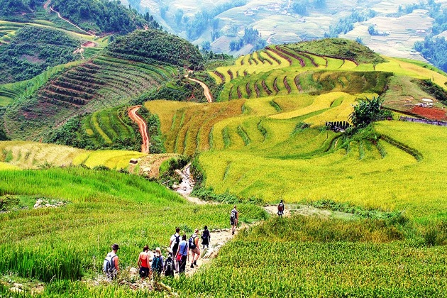 sapa in summer sapa tours