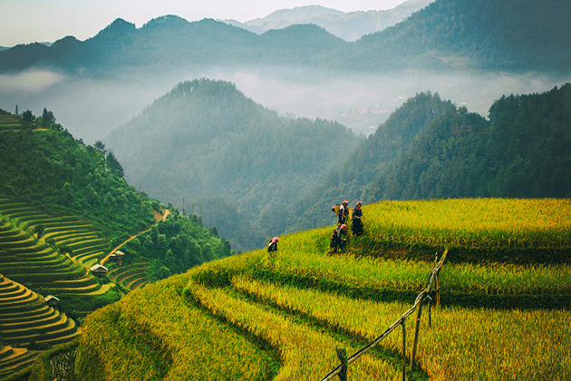 sapa nature sapa tours