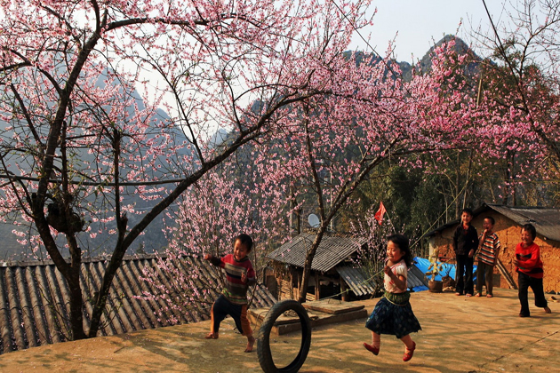 spring in sapa sapa tours