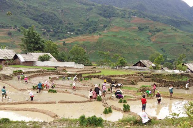 Lao Chai culture