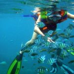Snorkeling and scuba diving in Nha Trang