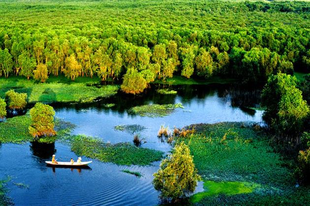 Tra Su Indigo Forest chau doc vietnam vacation