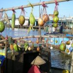 Chau Doc Travel – Things to Do & See