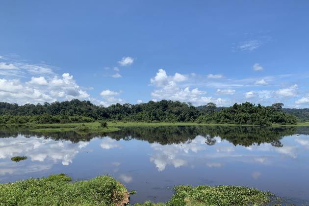 the panoramic view of nam cat tien national park
