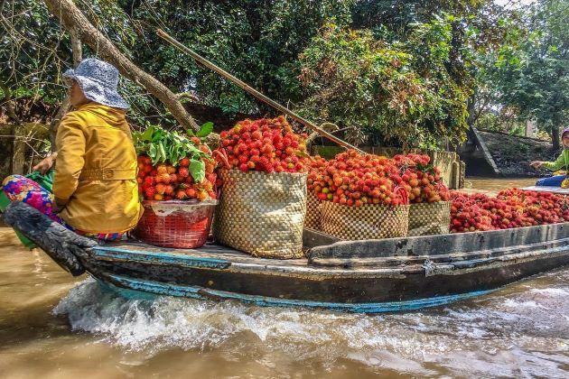 a boat full of fruit in mekong delta