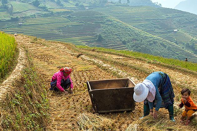 best time to visit yen bai vietnam