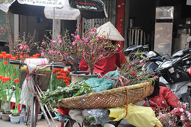 flower market on tet holiday