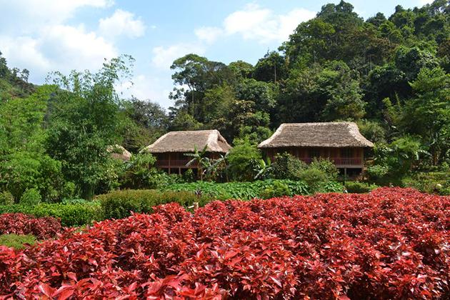Ecolodge Panhou Village hoang su phi vietnam