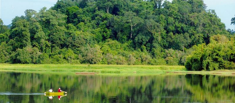 nam cat tien national park in southern vietnam