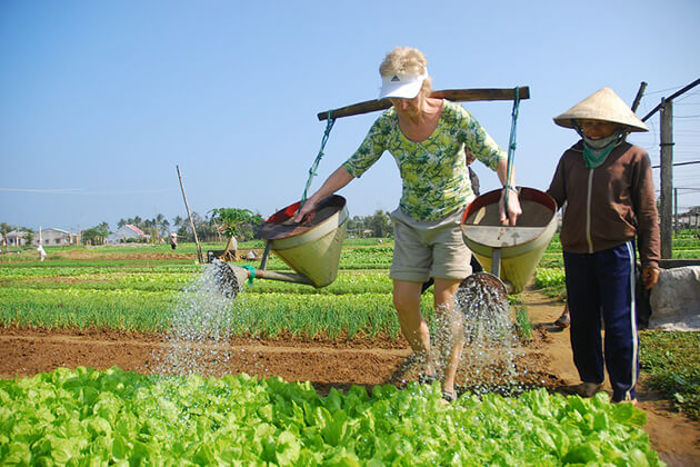 water vegetable in hoi an farming tour
