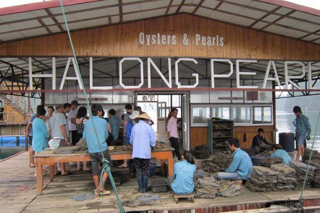 Halong Pearl Farm Village