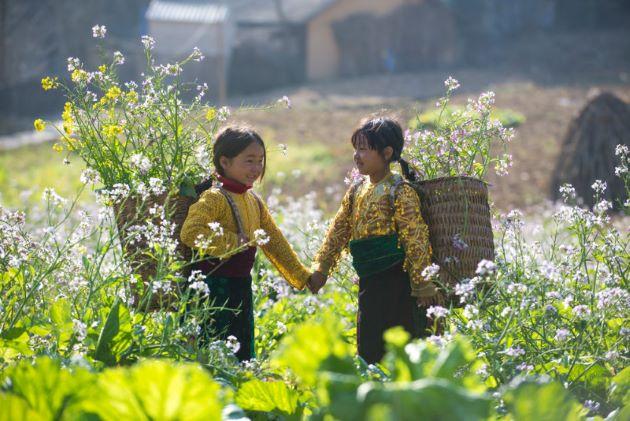 local children in sapa lao cai