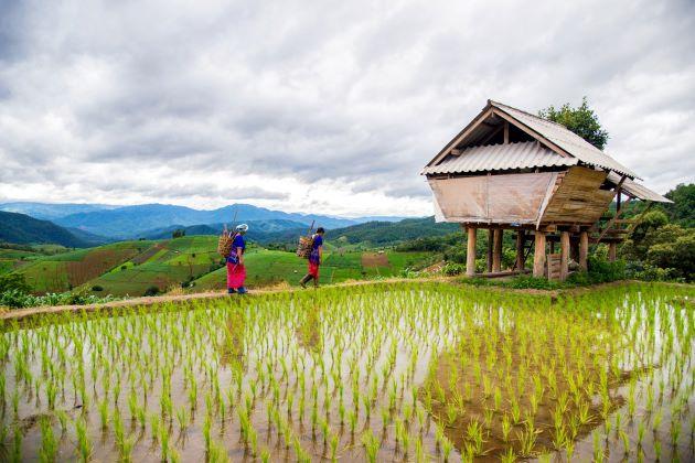 sapa village in lao cai