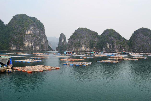 fishing village in lan ha bayfishing village in lan ha bay