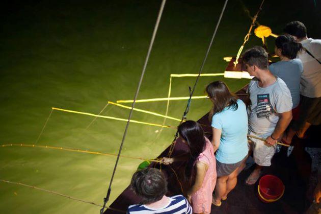 halong bay night squid fishing