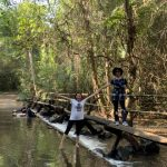 water stream in nam cat tien national park