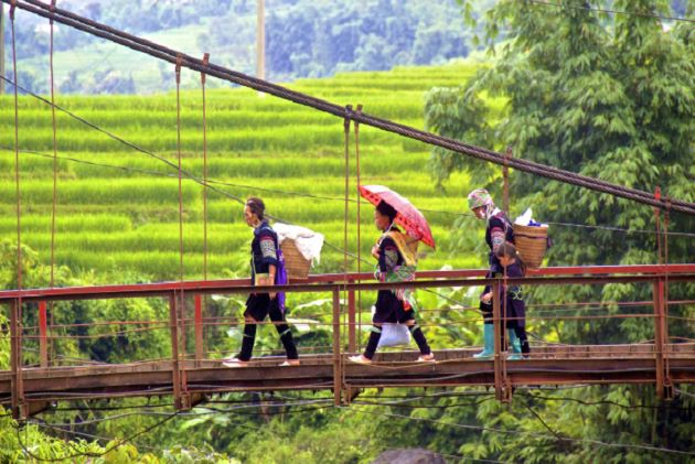 a bridge in sapa lao cai