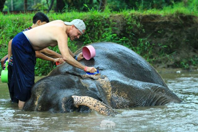 bath with elephant in chiang mai