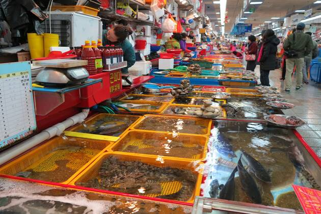 buy fresh seafood in duong dong market during phu quoc tour packages