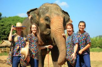 experience Elephant Sanctuary in thailand vietnam vacation packages