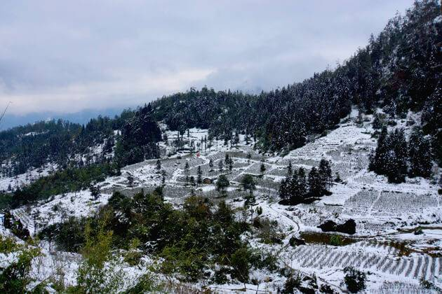 the winter of snow in ha giang
